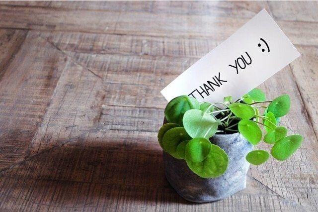 Show Your Customers How Thankful You Are for Their Business