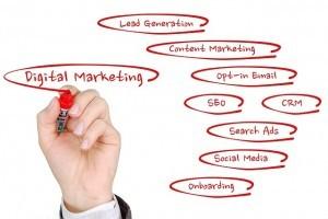 digital marketing expertise