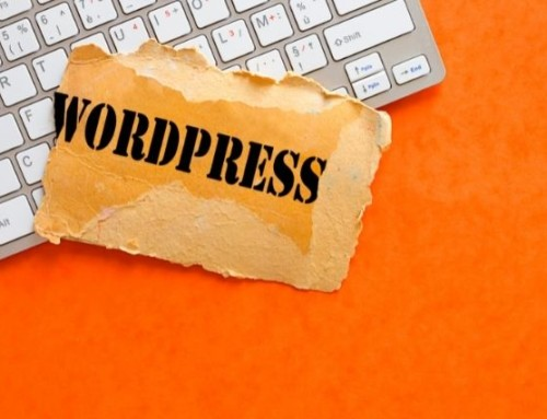 WordPress Basics Every Small Business Owner Should Know